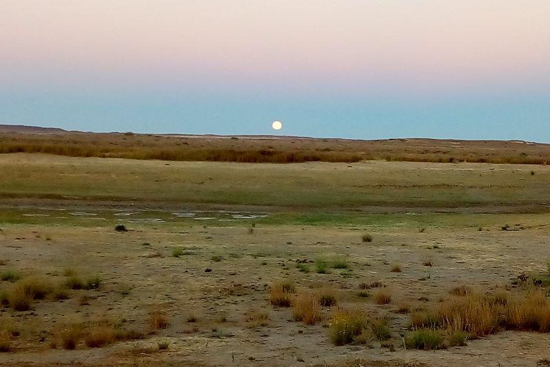 Karoo dawn